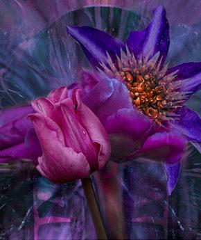 FLOWER GARDEN 764